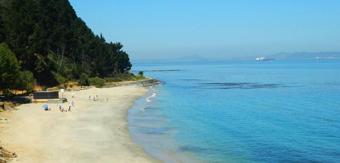 Playa en Punta de Parra